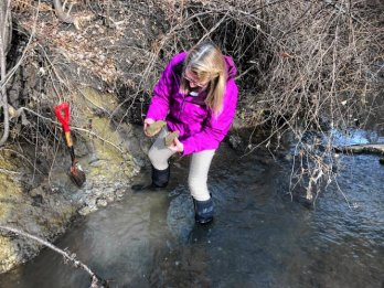 Dr. Julie-Brigam Grette, wearing bright-purple windbreaker and muck-boots, standing at muddy streambank, feet in water, examining hunks of clay-rich varve deposits she is holding. A shove rests, eager, on the bank.