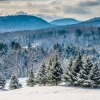 Snowy Vermont mountains with spruce trees in foreground.